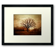 Winter Tree in Tooting Common Framed Print