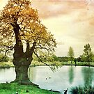 Richmond Park I by Ludwig Wagner