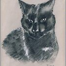 Ted - original cat drawing by Paulette Farrell