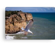 Soaring high above Canvas Print