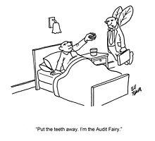 Audit Fairy Cartoon by abbottoons