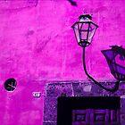 Lamp & Door/Wall-Magenta by Tamarra
