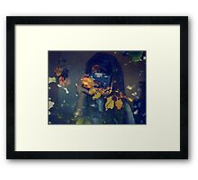 Autumn photographer. Framed Print