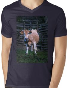 Pretty cow with a huge bell, staring  Mens V-Neck T-Shirt