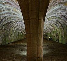 Fountains Abbey Cellarium by InstituteFUF