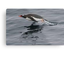 Flying Penguin Metal Print