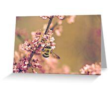 Bumblebee on Redbud Branch Greeting Card
