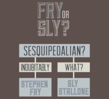 Fry or sly by Stephen Wildish