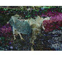 Capricorn Abstract Photographic Print
