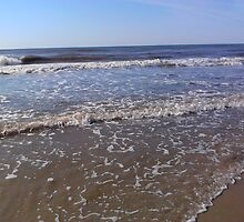 Ocean's Edge by Sherry O'Neill