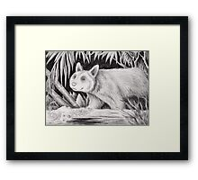 Fantasy Creature Of The Night Framed Print
