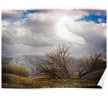 The Mesquite Tree and the Mountain Storm Poster