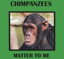 Chimpanzees Matter To Me (Bazia) by Amy Atherton