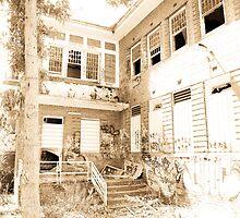 Larundel Mental Hospital, Bundoora - 2 by straylight