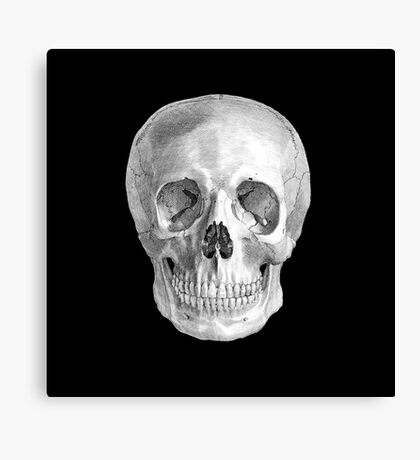 Albinus Skull 01 - Back To The Basic - Black Background Canvas Print