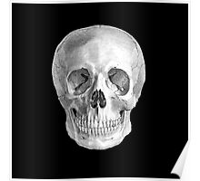 Albinus Skull 01 - Back To The Basic - Black Background Poster