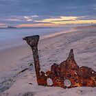Remains of the Allenwood. by Julie  White