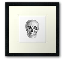 Albinus Skull 01 - Back To The Basic - White Background Framed Print