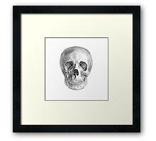 Albinus Skull 01 - Back To The Basic - White Background Framed Print