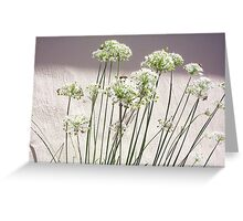 Bee - 16 03 13 - Nine Greeting Card