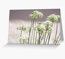 Bees - 16 03 13 - Eight  Greeting Card
