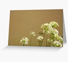 Bees - 16 03 13 - Five Greeting Card