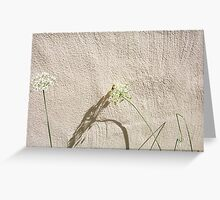 Bees - 16 03 13 - Four Greeting Card