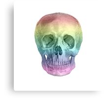 Albinus Skull 02 - Over The Rainbow - White Background Canvas Print