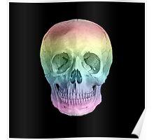 Albinus Skull 02 - Over The Rainbow - Black Background Poster