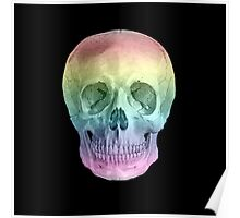 Albinus Skull 02 - Over The Rainbow - Black Background Poster