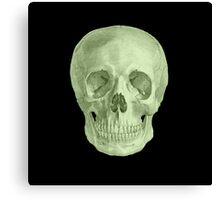 Albinus Skull 03 - Zombie Attack - Black Background Canvas Print