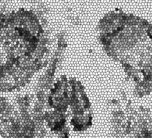 Albinus Skull 04 - Never Seen Before Genius Diamonds - Black Background Sticker