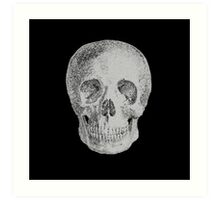 Albinus Skull 04 - Never Seen Before Genius Diamonds - Black Background Art Print