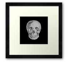 Albinus Skull 04 - Never Seen Before Genius Diamonds - Black Background Framed Print