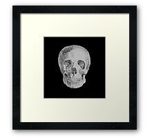 Albinus Skull 04 - Never Seen Before Genius Diamonds - Black Background Framed Print