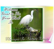 Welcome to Closeups in Nature Banner Poster