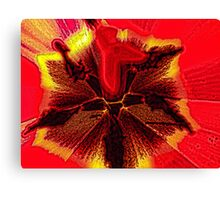 Macro of Center of Red Tulip Blowing In The Wind Canvas Print