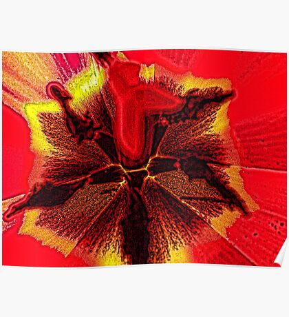 Macro of Center of Red Tulip Blowing In The Wind Poster