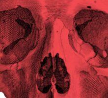 Albinus Skull 05 - Red Comunist Legend - Black Background Sticker