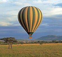 Hot Air Balloon over Serengeti by TonyKRO