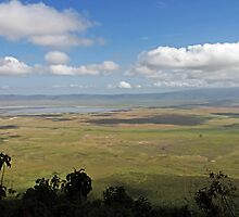Lake Manyara National Park by TonyKRO