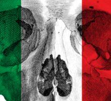 Albinus Skull 08 - Cappuccino Fairy Tale - White Background Sticker