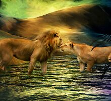 Lion Lovers by Carol  Cavalaris