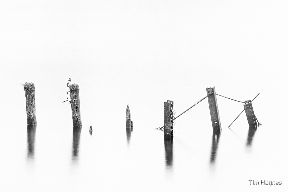 Transient Insignificance 2 by Tim Haynes