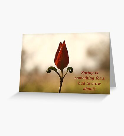 Spring is something for a bud to crow about. Greeting Card