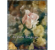 An Easter Rose For You Photographic Print