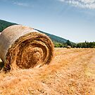 Hay bales by Jaime Pharr