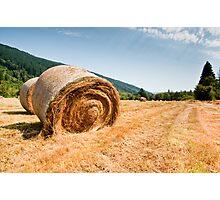 Hay bales Photographic Print