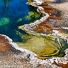 Hot Spring Pool at West Thumb Geyser Basin, Yellwstone NP by Kenneth Keifer
