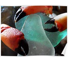 Sea Glass & Crabs Claws... Poster
